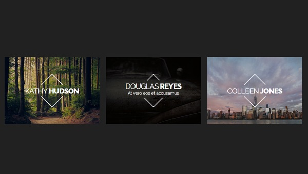 IMAGE HOVER EFFECT WITH TITLE & CAPTION