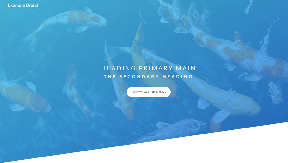 HEADER FOR LANDING PAGE