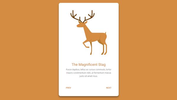 INFORMATION CARD SLIDER
