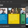 Halow website template and Mobile Template