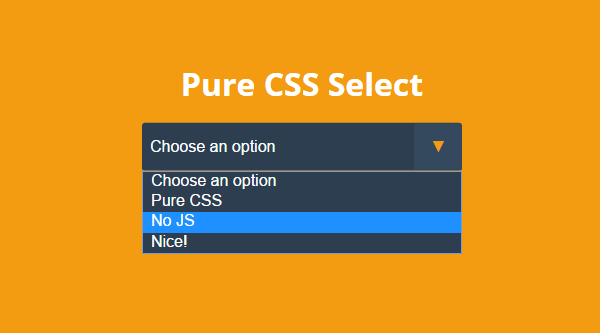 PURE CSS SELECT