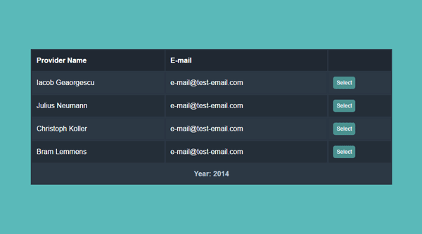 CSS RESPONSIVE TABLE & DETAIL VIEW