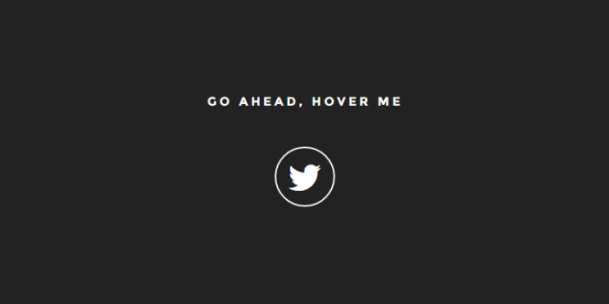 ANIMATED TWITTER BUTTON