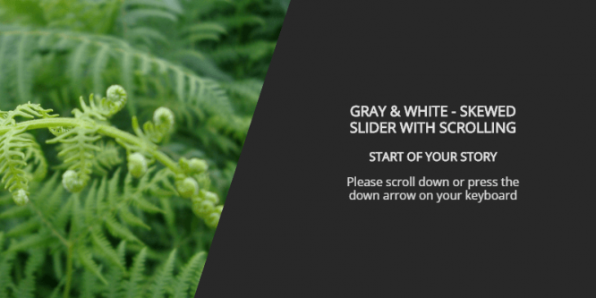 GRAY & WHITE – SKEWED SLIDER WITH SCROLLING