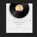 SKEUOMORPHIC AUDIO PLAYER