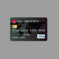 CREDIT CARD (CSS+SVG)