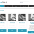 Paisa Point web and mobile website template