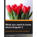 WHAT YOU NEED TO KNOW ABOUT ANGULAR 2