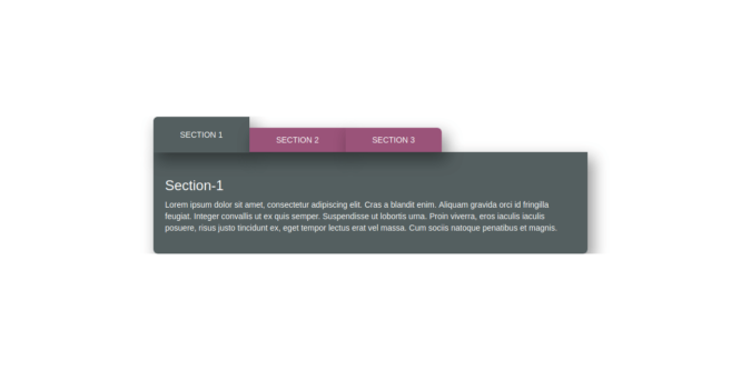 BOOTSTRAP TAB STYLE 24