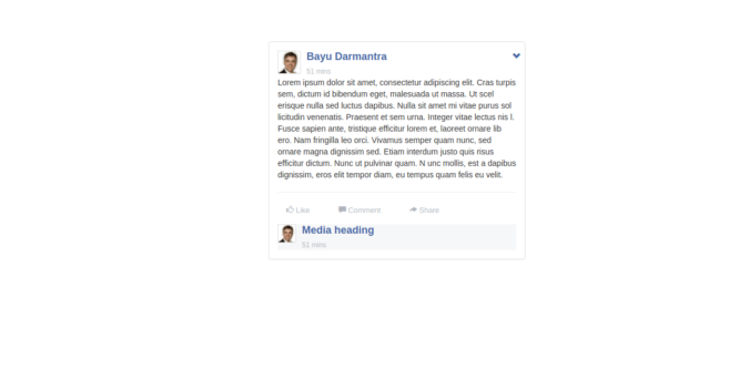 BOOTSTRAP FACEBOOK POST STYLE WITH COMMENTS BOX